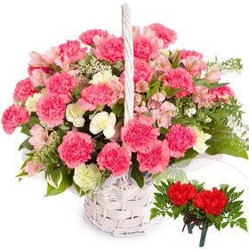 꽃행복338호+코사지2개