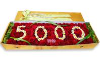 숫자기재 꽃박스